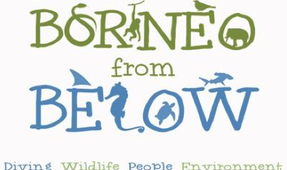 "New Series ""Borneo from Below"""