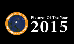"Ocean Geographic ""Pictures of the Year"" Competition Open for Entries"