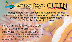 Reminder: The Inaugural Lembeh-Gulen Critter Shootout