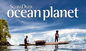 Scuba Diver Ocean Planet Issue 6 Out Now