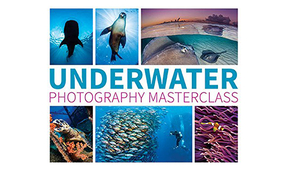 New Book: Underwater Photography Masterclass by Alex Mustard
