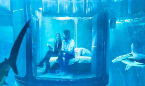 Airbnb to Host First Underwater Bedroom