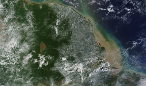 Extensive Reef System Discovered at Amazon River Mouth