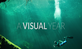 Video: A Visual Year