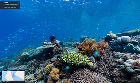 Google Adds 11 New Sites from Indonesia to Street View Underwater Imagery