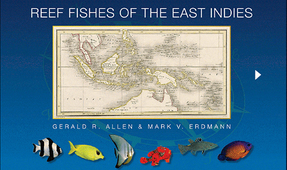 Reef Fishes of East Indies App Updated and Now Available for Android