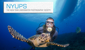 October NYUPS Meeting – Photographing Divers