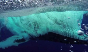 Video: Whale Breaches Feet from Underwater Photographer