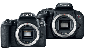 Canon Unveils EOS 77D and Rebel T7i Entry-Level DSLRs