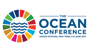 UN Calls for Commitments to Protect the World's Oceans