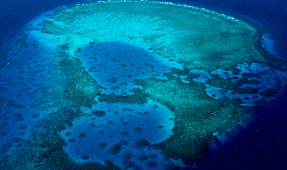 Concern for Great Barrier Reef After Cyclone Debbie