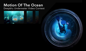"Deepblu Launches ""Motion of the Ocean"" Video Contest"