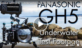 Video: First Underwater Footage with the Panasonic GH5