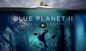 Blue Planet II Preview Released