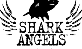 Shark Angel's World Oceans Day Charity Auction