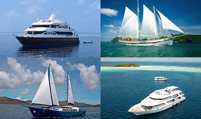 All 4 Diving Liveaboards Online Cruise Booking Site Launched