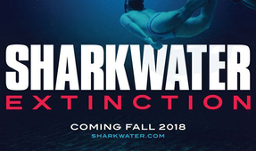 "Video: ""Sharkwater Extinction"" Trailer"