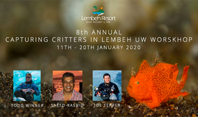 Details for the 2020 Capturing Critters Workshop in Lembeh