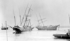 Century-Old Wrecks Unearthed in Hurricane