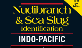New Edition of Nudibranch and Sea Slug Identification—Indo-Pacific