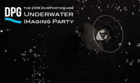 2018 DPG Underwater Imaging Party Announced