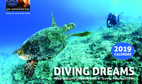 Diving Dreams 2019 Calendar Available