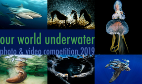 Our World Underwater 2019 – Deadline: January 26th