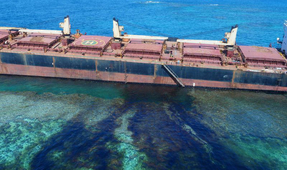 Solomon Islands Oil Spill Threatening World's Second-Largest Coral Reef Atoll