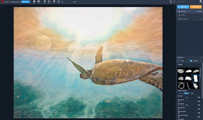 Phase One Unveils Capture One 12 Image-Editing Software