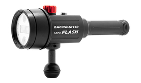 Backscatter Officially Announces the Mini Flash Compact Strobe and Optical Snoot