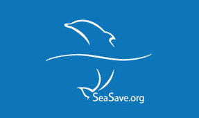 Sea Save Foundation 2019 Auction Opens
