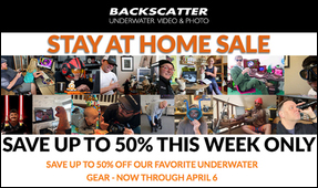 Announcing the Backscatter Stay At Home Sale