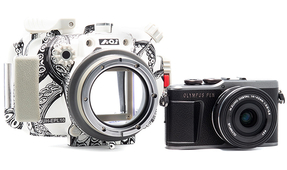 Backscatter Publishes Review of Olympus E-PL10 Camera and Housing