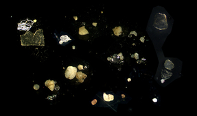 Study: Seafloor Covered in 14 Million Metric Tons of Microplastics