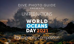Eighth Annual United Nations World Oceans Day Photo Competition