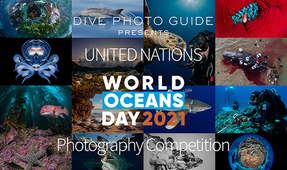 Reminder: Eighth World Oceans Day Photo Competition