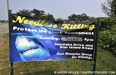 Humane Society Montauk Shark Tournament