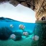 Underwater Seascapes