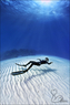 Freedive Photography