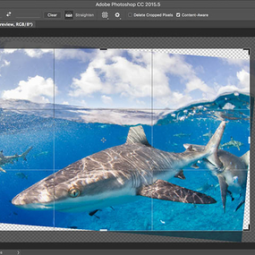 Photoshop's Content-Aware Crop Tool for Underwater Photography