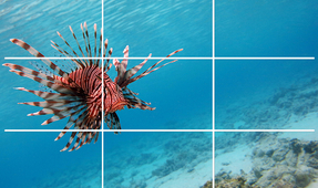 An Introduction to Underwater Video Composition